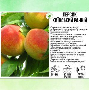 """Персик """"Київський ранній"""""""